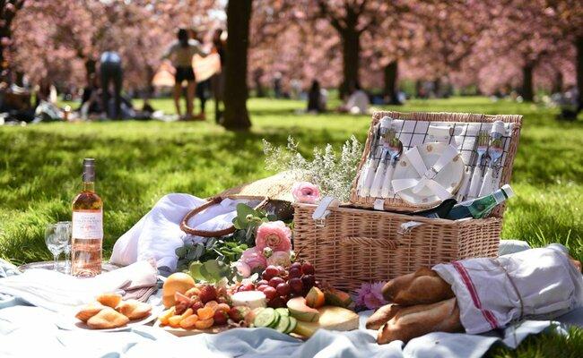 du lịch pháp cần bao nhiêu tiền - đi picnic