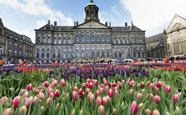 địa điểm du lịch ở amsterdam - cung điện hoàng gia