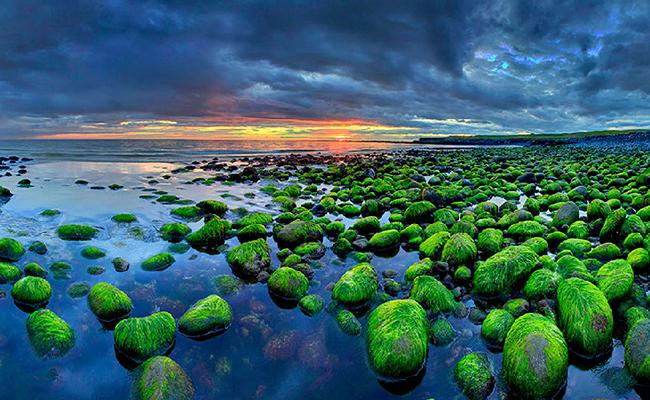 Kinh nghiệm du lịch Iceland giá rẻ đầy đủ chi tiết