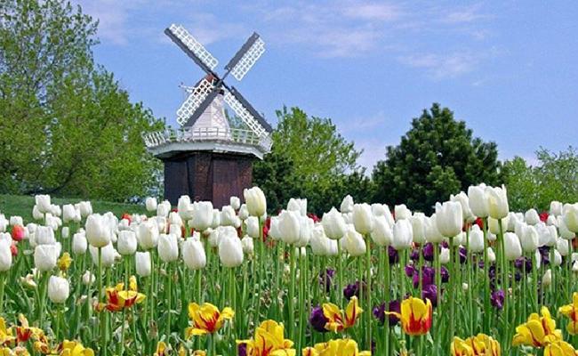 Các chi phí phổ biến bạn nên biết khi đến Hà Lan