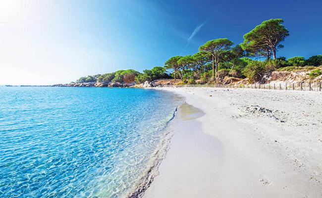 Bãi biển Palombaggia,Porto-Vecchio - Corsica