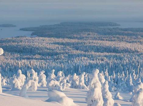 10 vườn quốc gia bạn nên ghé qua khi đặt chân tới Phần Lan
