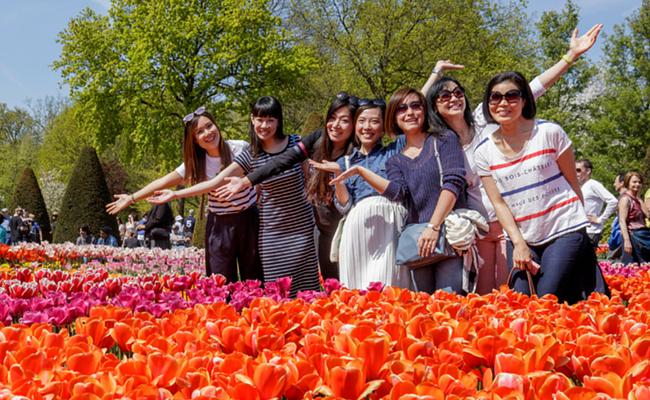 Khám phá lễ hội hoa Tulip Keukenhof ở Hà Lan