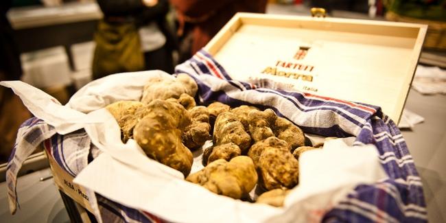 du-lich-chau-au-le-hoi-nam-truffle-trang-alba