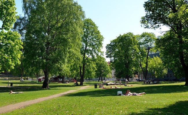 tour du lịch Bắc Âu - Oslo