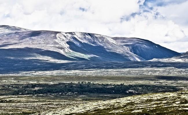 du lịch bắc âu tự túc - Dovrefjell-Sunndalsfjella