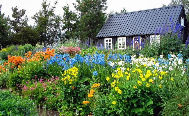du lịch iceland tự túc - Akureyri
