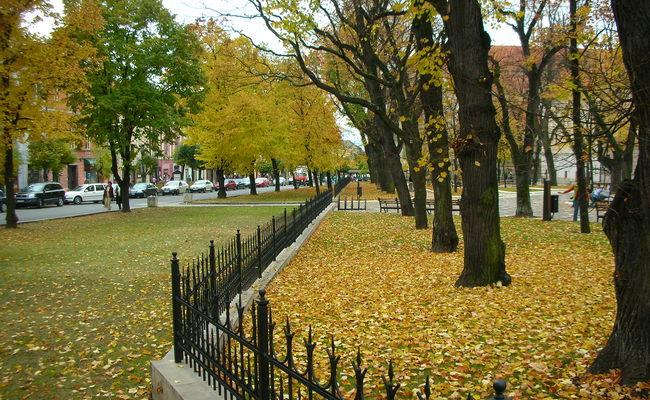 du lịch levoca - mùa thu