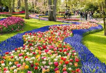 mùa xuân châu âu - ảnh đại diện