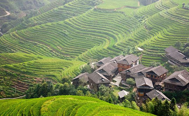 Làng Ping'an, Trung Quốc