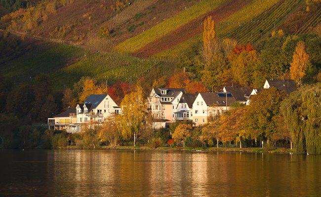 sông rhine - mùa thu