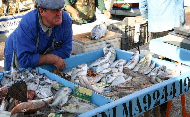 khu cảng cổ vieux-port - chợ cá
