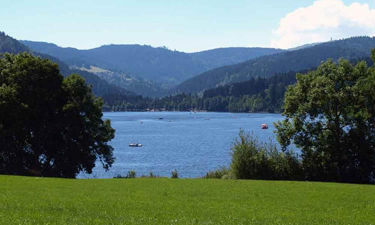 Đi bộ quanh hồ Titisee