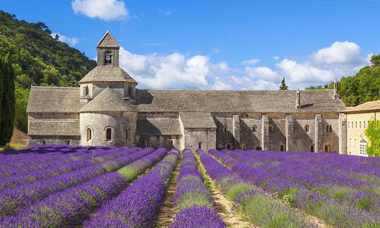 Tu viện Abbaye de Sénanque