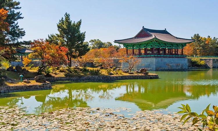 Tour Hàn Quốc Daegu - Gyeongju - Busan 2019