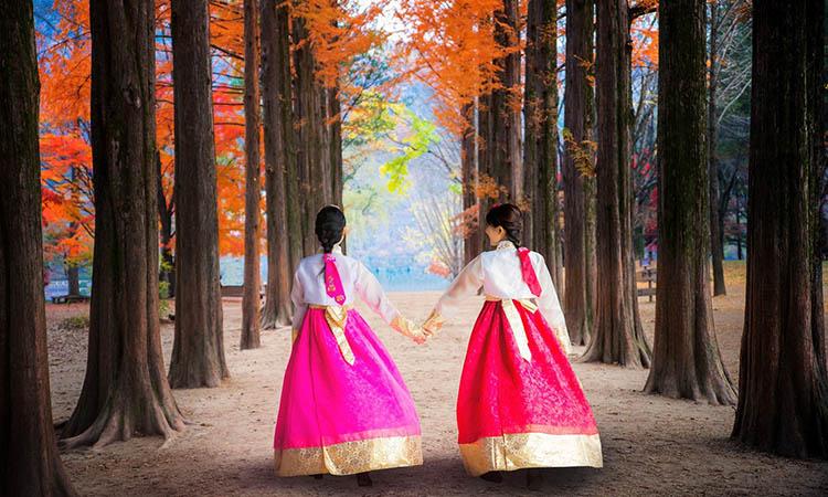 Tour Hàn mùa thu
