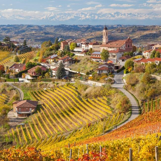Thị trấn Alba - vùng Piedmont