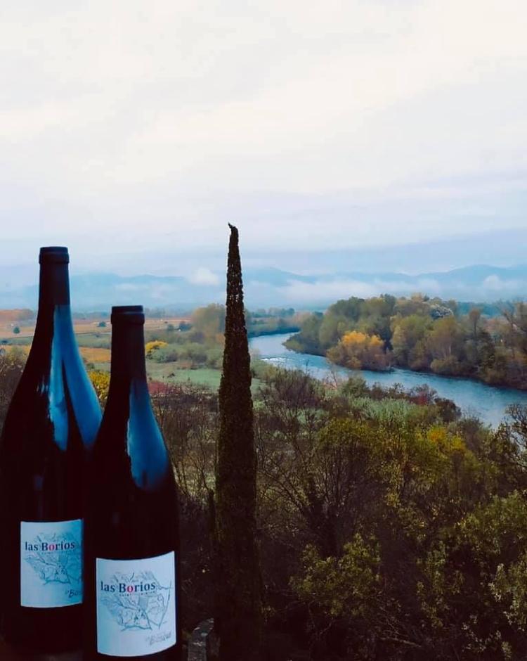 Những chai rượu nho trứ danh vùng vùng Languedoc – Roussillon