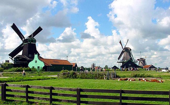 Khám phá những chiếc cối xay gió ở Hà Lan