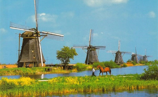 Bảo tàng cối xay gió ở Zaanse Schans