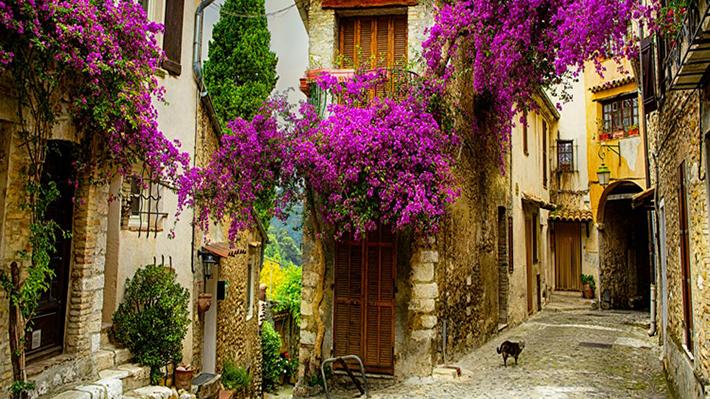 Kiến trúc và cảnh sắc thiên nhiên Provence