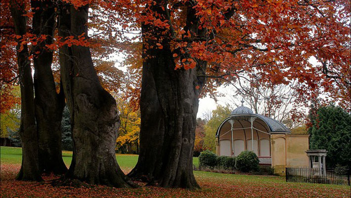 Công viên hoàng gia Victoria