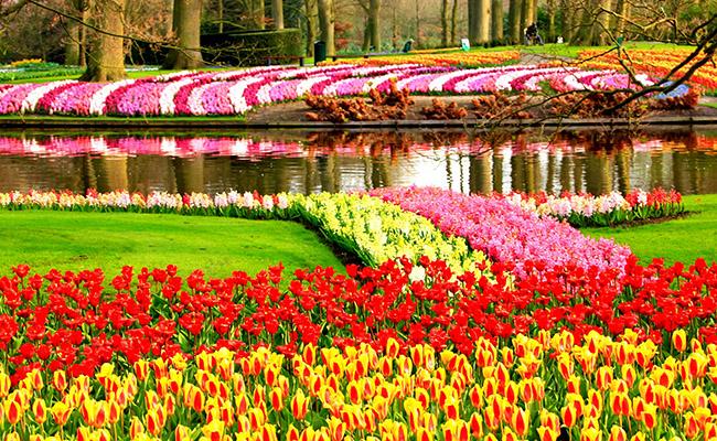 Hà Lan - một trong những quốc gia có cảnh quan tuyệt đẹp